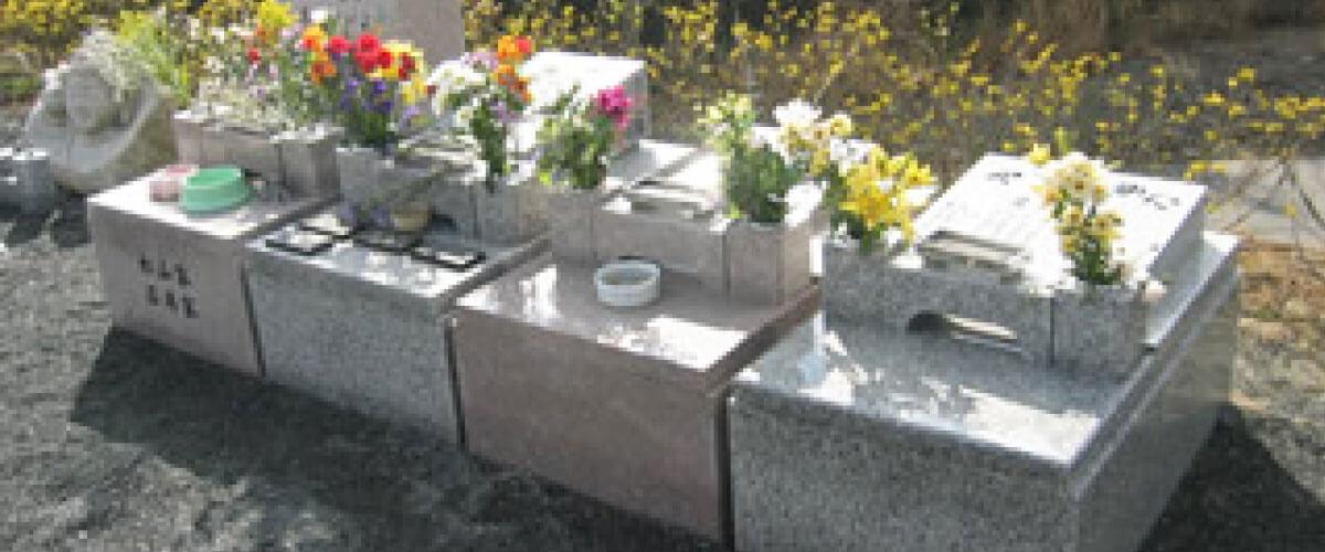 個別墓の写真