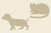 逢の杜ペット霊園 猫ちゃんの火葬